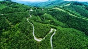 Δασικοί χάρτες: Παράταση 6 μηνών στη διαδικασία υποβολής αντιρρήσεων -  Μείωση του τέλους κατά 50% - εικόνα 2