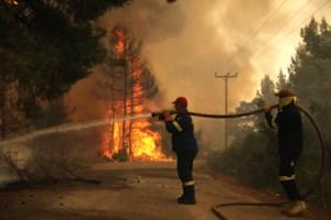 Φωτιά στην Εύβοια: Μαίνεται το μέτωπο στη Γαλατσώνα - Σταμάτησαν στη θάλασσα οι φλόγες στο Αγριοβότανο