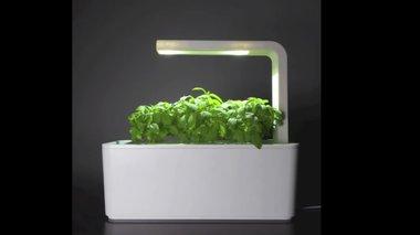 smart-herb-garden-ksafnika-oloi-ginane-eksper-sta-botana