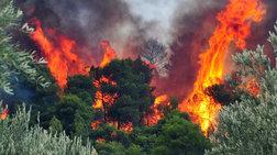 Υψηλός κίνδυνος πυρκαγιάς σε Αττική  και νότια Εύβοια αύριο