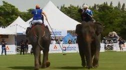 tournoua-polo-me-elefantes-stin-tailandi