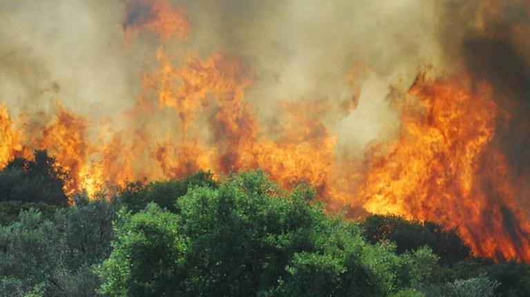 Μεγάλη πυρκαγιά μαίνεται στα Χανιά – Εκκενώθηκε οικισμός