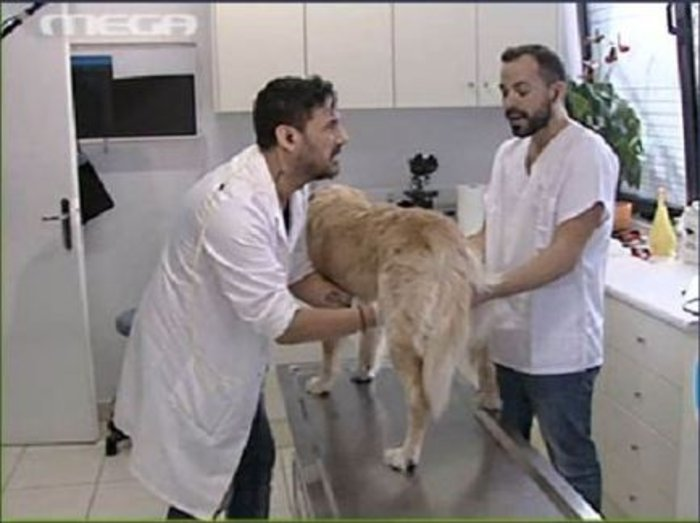 Ο συνεργάτης του Μάρκους Σεφερλή, Χρήστος Νέζος στο κτηνιατρείο