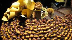 Γιορτή του Κάστανου στην Καστάνιτσα, στον πανέμορφο Πάρνωνα