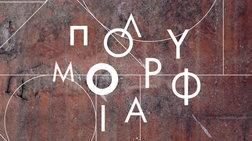 festibal-dimosias-texnis-polumorfia-open-gallery
