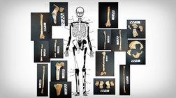 Αμφίπολη: 5 νεκροί-2 άνδρες, γυναίκα, βρέφος και καμένος σκελετός