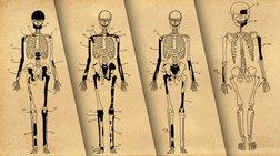 Αμφίπολη: Η απάντηση των ανθρωπολόγων για τα υπόλοιπα 393 οστά