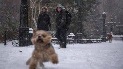 Στην κατάψυξη η Νέα Υόρκη από «ιστορική» χιονοθύελλα