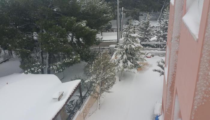 Στα λευκά η Αττική-Χιονιάς σε όλη την Ελλάδα - εικόνα 6
