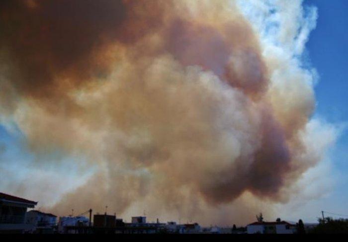 Νεάπολη-Λακωνία: Καίγονται σπίτια, καταστήματα και το Κέντρο Υγείας - εικόνα 31