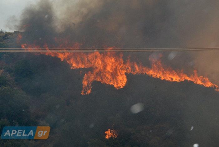 Νεάπολη-Λακωνία: Καίγονται σπίτια, καταστήματα και το Κέντρο Υγείας - εικόνα 5