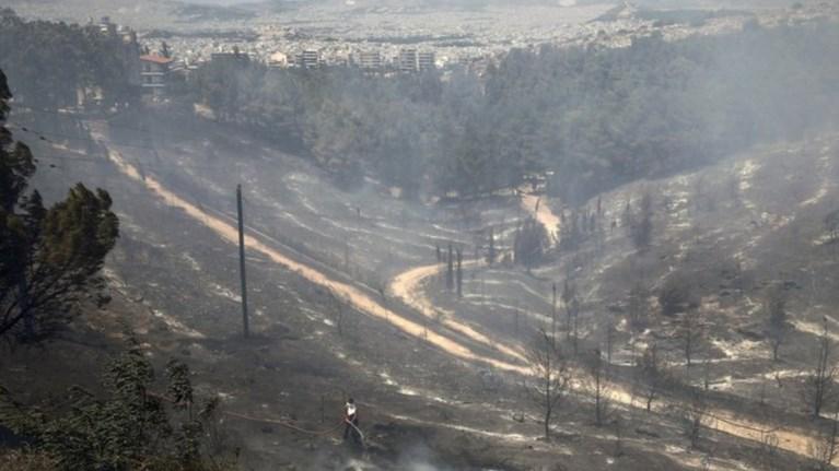 Η κυβέρνηση ανάβει φωτιές, βλέπει «οργανωμένο σχέδιο»