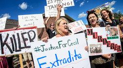 Ζιμπάμπουε: Αφήστε μας να τιμωρήσουμε τον δολοφόνο του Cecil!