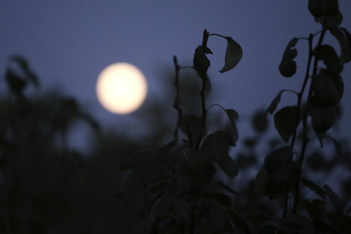 Αυτή η πανσέληνος ήταν ένα αλλιώτικο, αν κι όχι μπλε φεγγάρι (εικόνες) - εικόνα 5