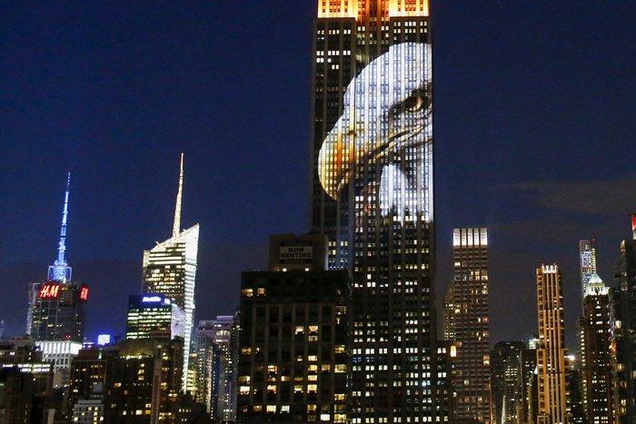 Ο Σεσίλ στο πιό εμβληματικό κτίριο της Νέας Υόρκης - εικόνα 5