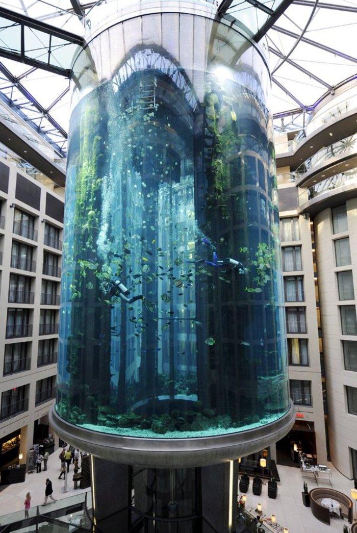 Το ασανσέρ ξενοδοχείου που έγινε τεράστιο, μαγικό ενυδρείο