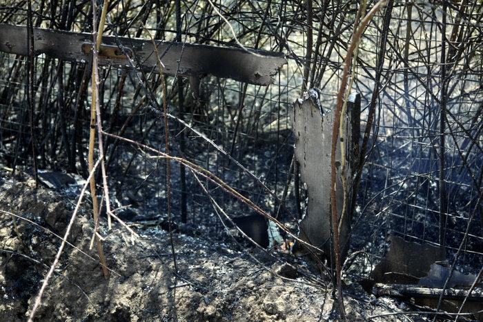 Καμένη γη από τη μεγάλη πυρκαγιά στην Αιτωλοακαρνανία [Εικόνες] - εικόνα 2