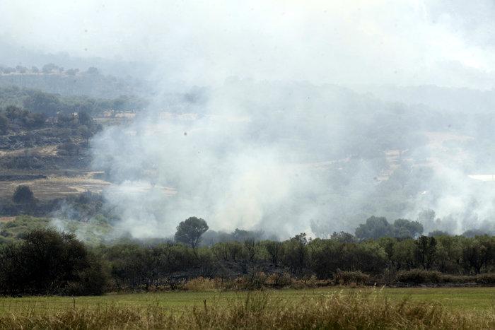 Καμένη γη από τη μεγάλη πυρκαγιά στην Αιτωλοακαρνανία [Εικόνες] - εικόνα 3