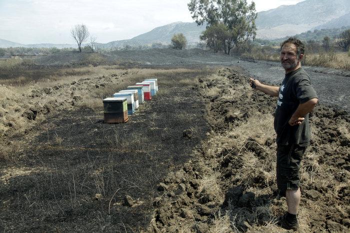 Καμένη γη από τη μεγάλη πυρκαγιά στην Αιτωλοακαρνανία [Εικόνες] - εικόνα 5