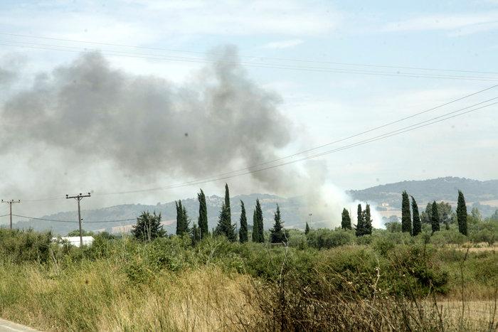 Καμένη γη από τη μεγάλη πυρκαγιά στην Αιτωλοακαρνανία [Εικόνες] - εικόνα 6