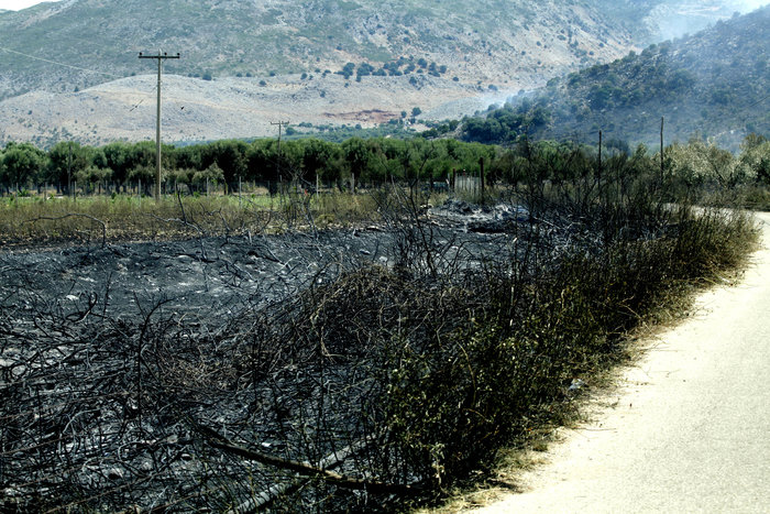 Καμένη γη από τη μεγάλη πυρκαγιά στην Αιτωλοακαρνανία [Εικόνες] - εικόνα 7