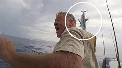 Καρχαρίας πηδά μπροστά από βάρκα και ο ψαράς παθαίνει... σοκ
