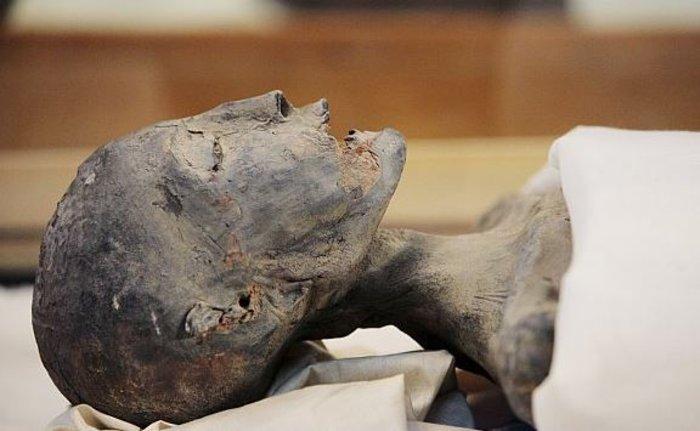 Βρέθηκε ο τάφος της βασίλισσας Νεφερτίτης; - εικόνα 3
