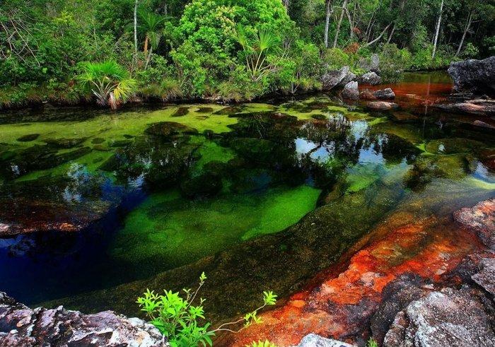 Η φύση κάνει...τέχνη και προσφέρει υπέροχες εικόνες ( φωτό) - εικόνα 8