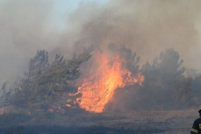 Συνελήφθη 60χρονος για τη μεγάλη φωτιά στη Ρόδο