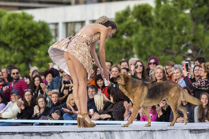 Η σέξι κτηνίατρος που... αποκαλύφθηκε στη Θεσσαλονίκη [Εικόνες] - εικόνα 5