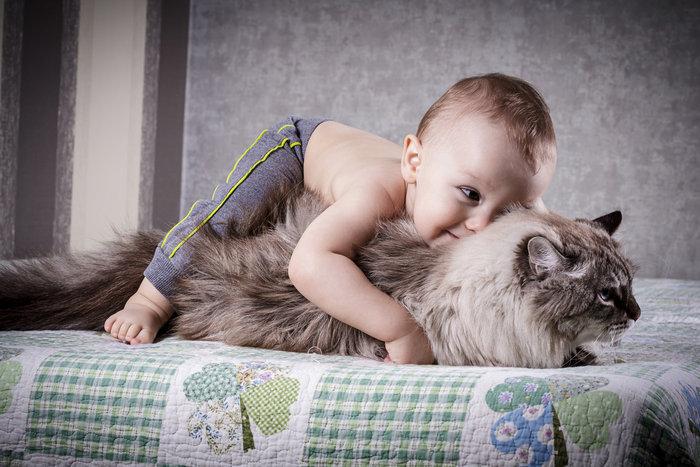 Οι τρυφερότερες φωτογραφίες αγάπης, παιδιών και ζώων - εικόνα 6