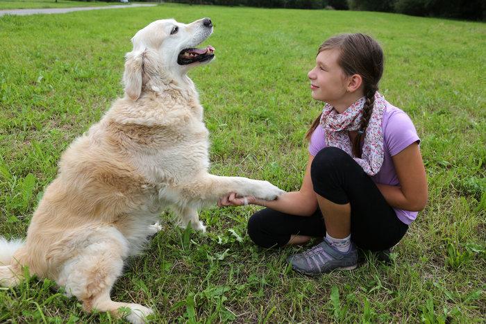 Οι τρυφερότερες φωτογραφίες αγάπης, παιδιών και ζώων - εικόνα 8