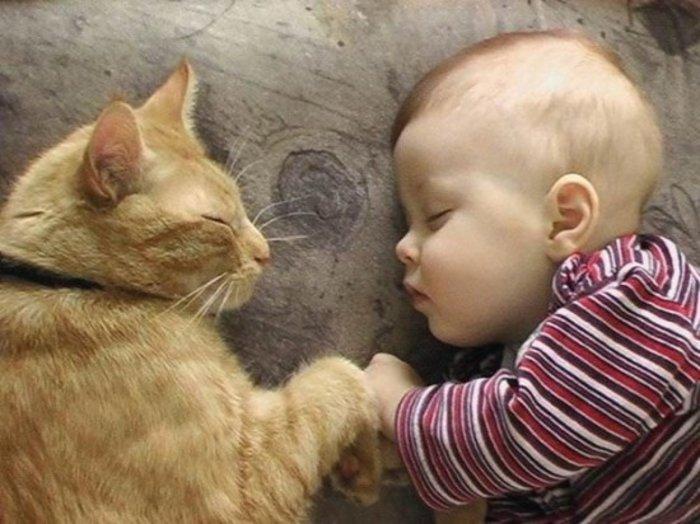 Οι τρυφερότερες φωτογραφίες αγάπης, παιδιών και ζώων - εικόνα 2
