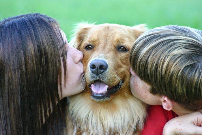 Οι τρυφερότερες φωτογραφίες αγάπης, παιδιών και ζώων - εικόνα 4