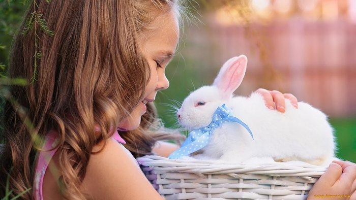 Οι τρυφερότερες φωτογραφίες αγάπης, παιδιών και ζώων - εικόνα 11
