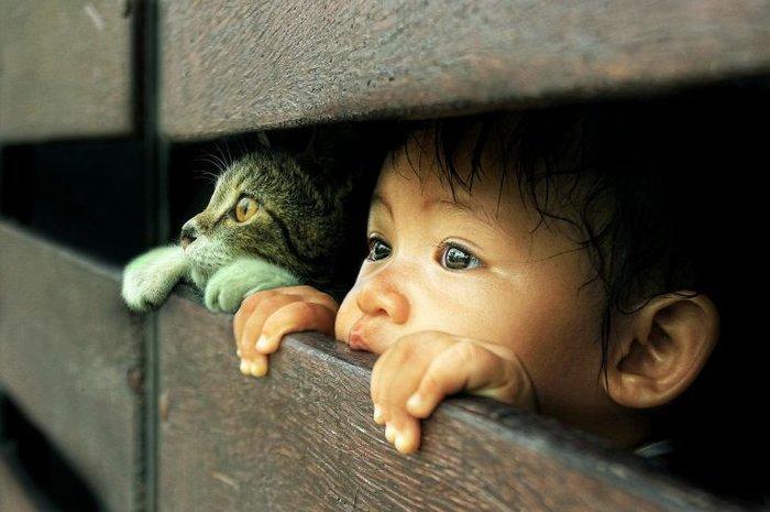 Οι τρυφερότερες φωτογραφίες αγάπης, παιδιών και ζώων - εικόνα 13