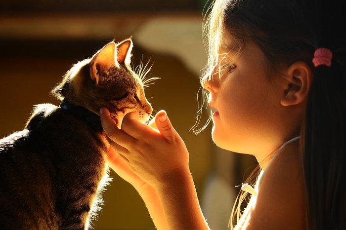 Οι τρυφερότερες φωτογραφίες αγάπης, παιδιών και ζώων - εικόνα 14