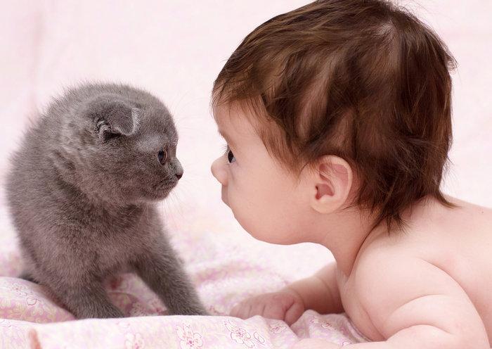 Οι τρυφερότερες φωτογραφίες αγάπης, παιδιών και ζώων - εικόνα 15