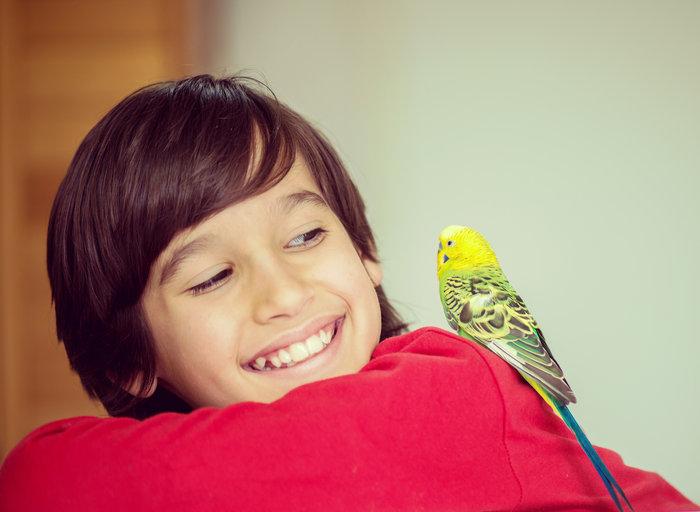 Οι τρυφερότερες φωτογραφίες αγάπης, παιδιών και ζώων - εικόνα 16