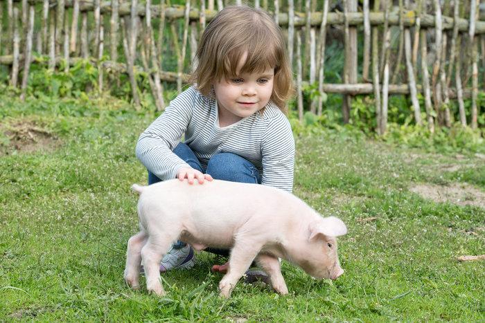 Οι τρυφερότερες φωτογραφίες αγάπης, παιδιών και ζώων - εικόνα 17