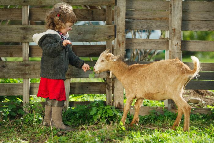 Οι τρυφερότερες φωτογραφίες αγάπης, παιδιών και ζώων - εικόνα 18