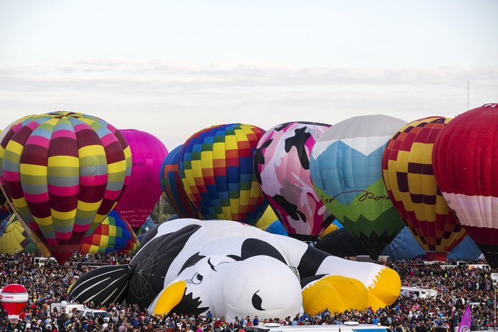 Γιορτή από πρωτότυπα αερόστατα στις ΗΠΑ. Απλά υπέροχη! - εικόνα 5