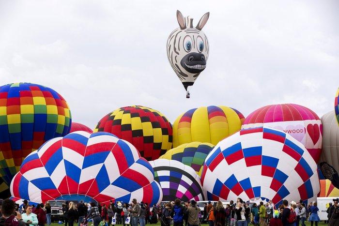 Γιορτή από πρωτότυπα αερόστατα στις ΗΠΑ. Απλά υπέροχη! - εικόνα 10