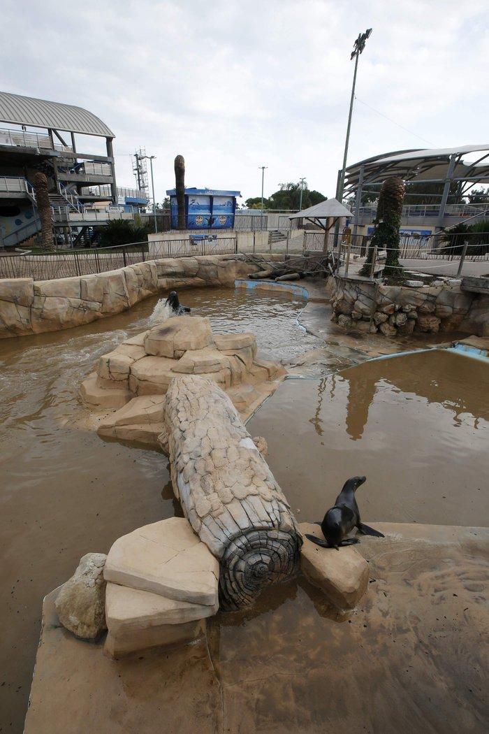 Εικόνες καταστροφής στη Γαλλική Ριβιέρα μετά από τις πλημμύρες - εικόνα 12