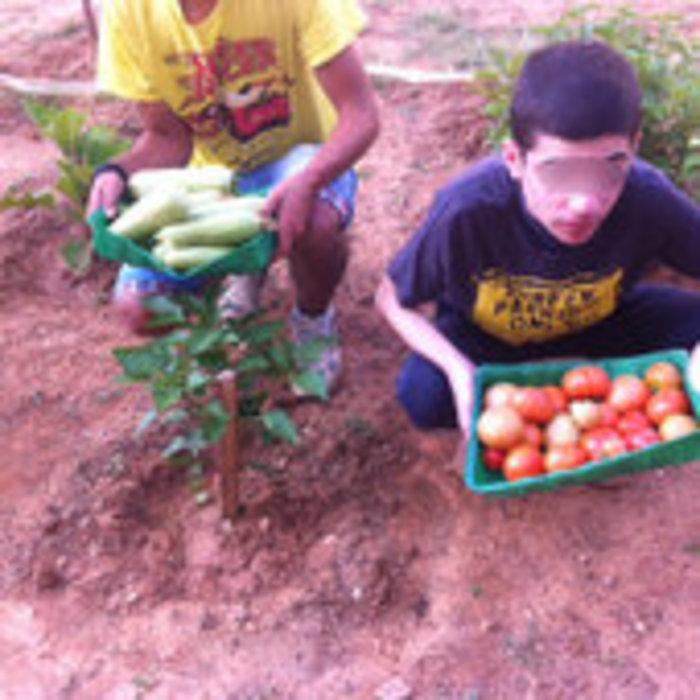 Εργαστήριο κηπουρικής μαθητών Ειδικού Σχολείου