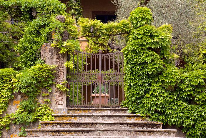 Ξενάγηση στο ειδυλλιακό «παλάτι» του Στινγκ στην Τοσκάνη - εικόνα 7