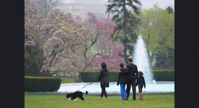 Ο σκύλος των Ομπάμα που κάνει «άνω κάτω» το Λευκό Οίκο - εικόνα 6
