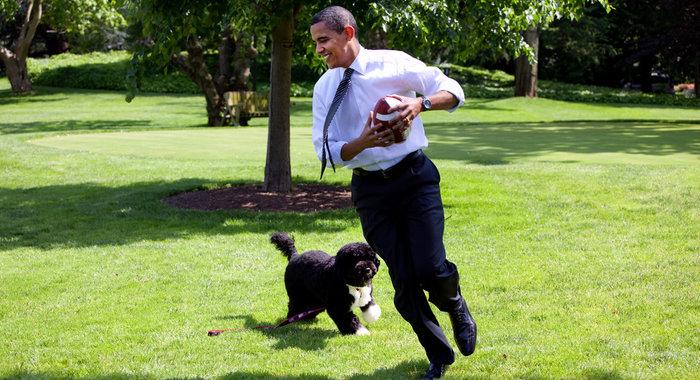 Ο σκύλος των Ομπάμα που κάνει «άνω κάτω» το Λευκό Οίκο - εικόνα 16