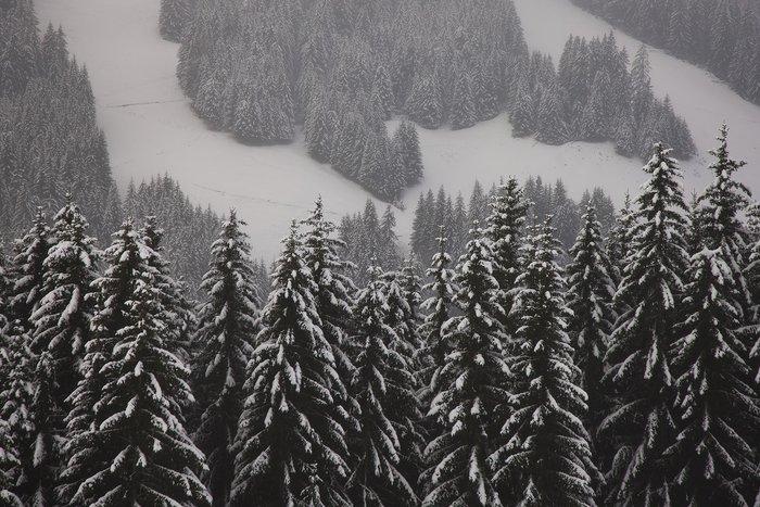 Αυτά είναι τα καλύτερα χιονοδρομικά κέντρα στον κόσμο - εικόνα 11