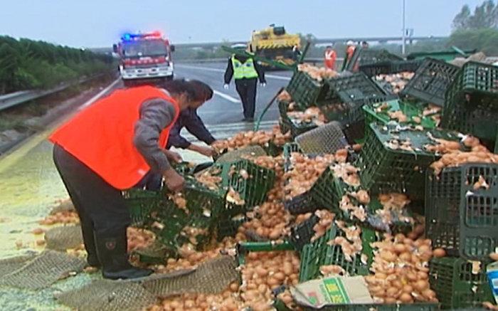 Τι γίνεται όταν 120.000 αβγά σπάνε στη λεωφόρο από ατύχημα; Ομελέτα... - εικόνα 2